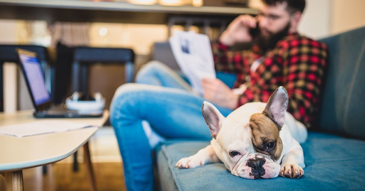 How Companies Benefit When Employees Work Remotely